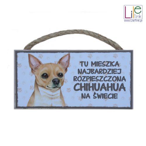 Tabliczka z chihuahua