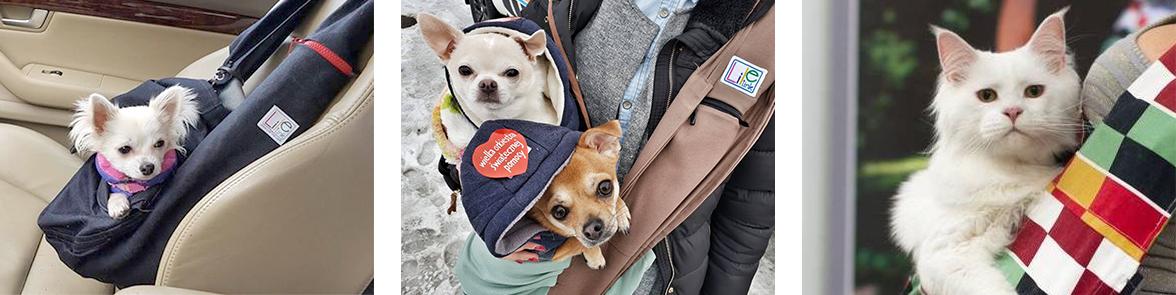 torba dla psa kto to kupi