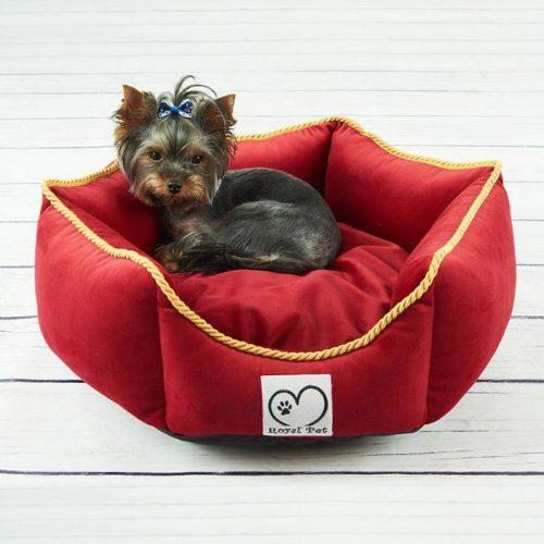 Legowisko dla psa royal